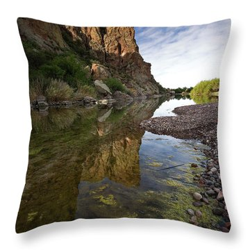 River Serenity Throw Pillow by Sue Cullumber
