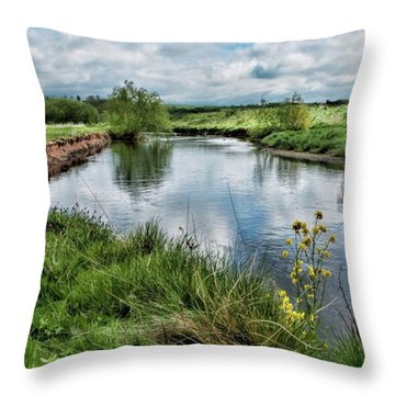 River Tame, Rspb Middleton, North Throw Pillow by John Edwards