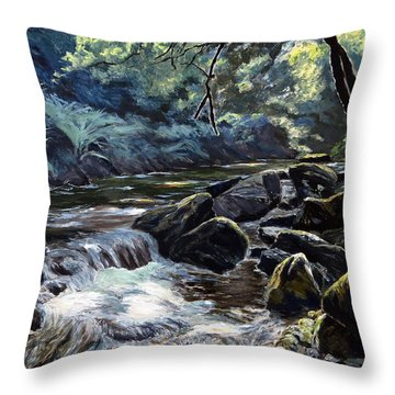 Throw Pillow featuring the painting River Taw Sticklepath by Lawrence Dyer