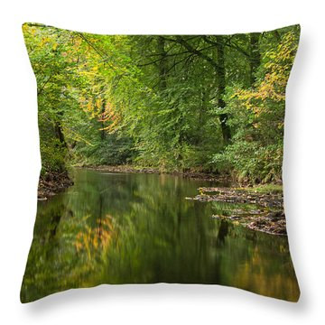 River Teign On Dartmoor Throw Pillow