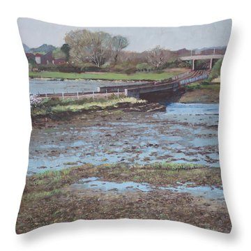 Throw Pillow featuring the painting River Test At Totton Southampton by Martin Davey