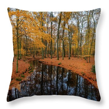 River Through Autumn Throw Pillow