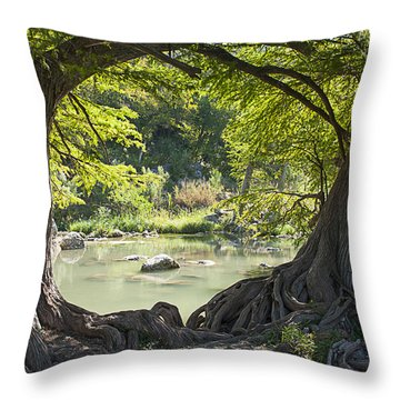 River Through Trees Throw Pillow