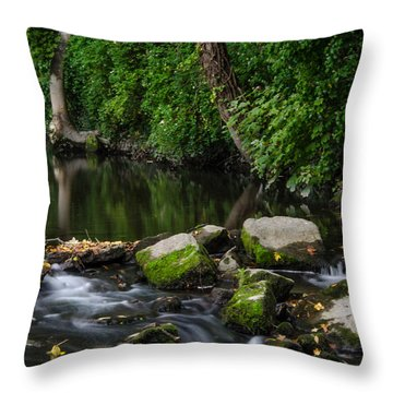 River Tolka Throw Pillow