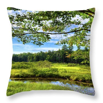 Throw Pillow featuring the photograph River Under The Maple Tree by David Patterson