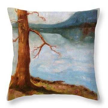 View Of Nebo Throw Pillow