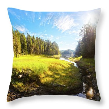 River Valley Throw Pillow by Evgeni Dinev