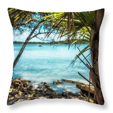 River Wilderness Throw Pillow