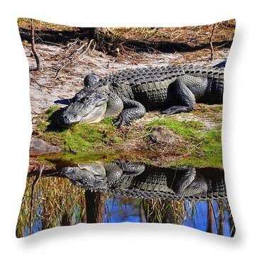 Throw Pillow featuring the photograph Riverside Reflection by Al Powell Photography USA