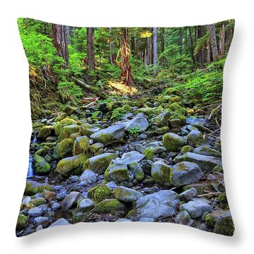 Riverbed Full Of Mossy Stones With Small Cascade Throw Pillow