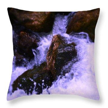 River's Dream Throw Pillow