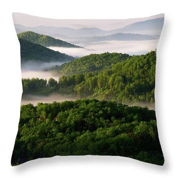 Rivers Of White Throw Pillow
