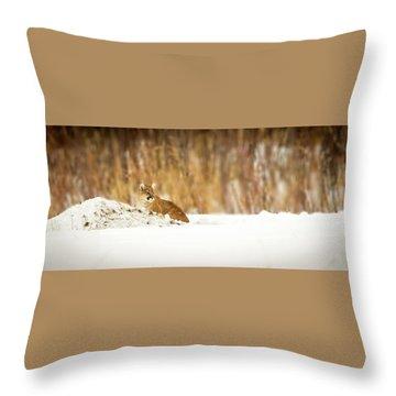 Rivers Treasure  Throw Pillow