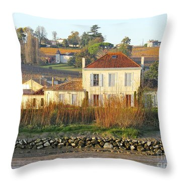 Riverside Excellence Throw Pillow