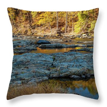 Throw Pillow featuring the photograph Riverside by Iris Greenwell