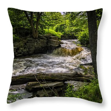 Riverside Throw Pillow by Mark Myhaver
