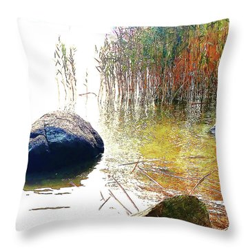 Throw Pillow featuring the photograph Riverside Melody by Roger Bester