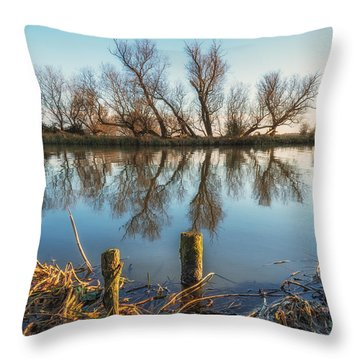 Throw Pillow featuring the photograph Riverside Trees by James Billings