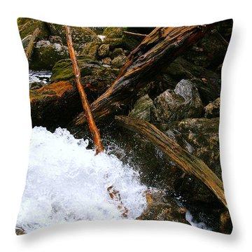 Riverwood Throw Pillow