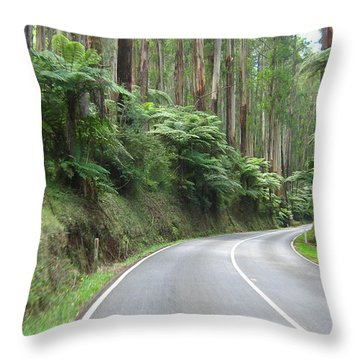 Road 2 Throw Pillow