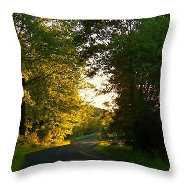 Road At Sunset Throw Pillow