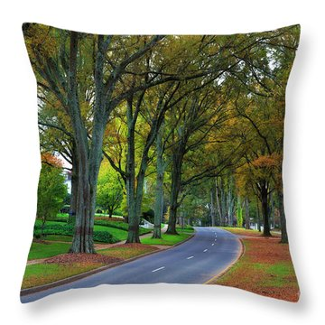Road In Charlotte Throw Pillow