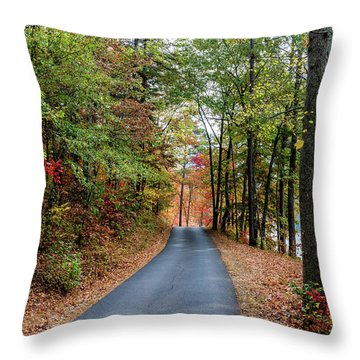 Road In The Woods Throw Pillow
