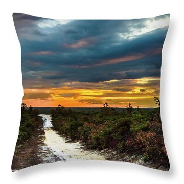 Throw Pillow featuring the photograph Road Into The Pinelands by Louis Dallara