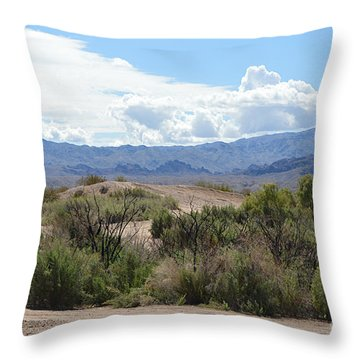 Road Less Traveled Throw Pillow by Renie Rutten