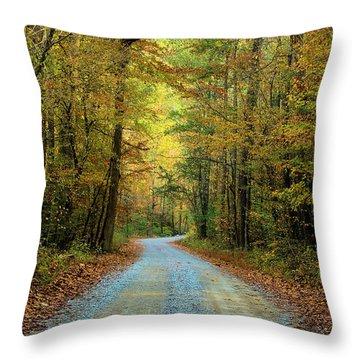 Road Less Traveled...ii Throw Pillow