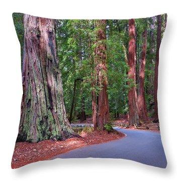 Road Through Redwood Grove Throw Pillow