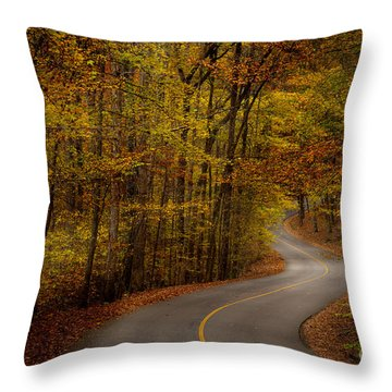Road Through Tishomingo State Park Throw Pillow