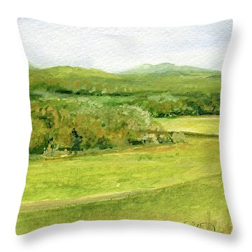 Road Through Vermont Field Throw Pillow