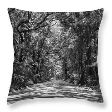 Road To Angel Oak Grayscale Throw Pillow