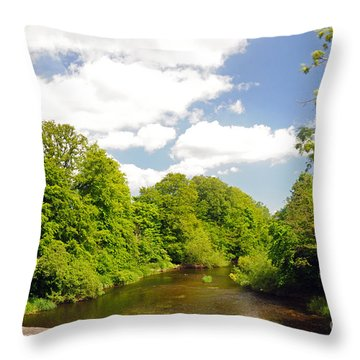 Road To Dunboyne Throw Pillow by Cindy Murphy - NightVisions