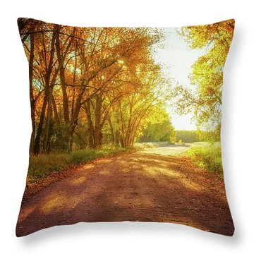 Throw Pillow featuring the photograph Road To Eternity by John De Bord