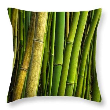 Road To Hana Bamboo Panorama - Maui Hawaii Throw Pillow