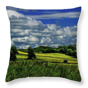 Road To Heaven Throw Pillow