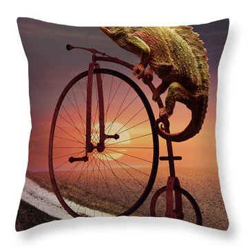 Road To Home Throw Pillow