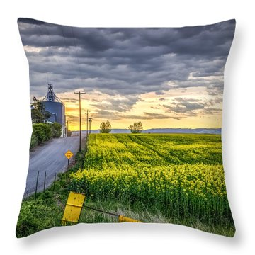 Road To Mann's Lake Throw Pillow