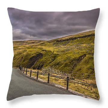 Road To No Where Throw Pillow by David Warrington