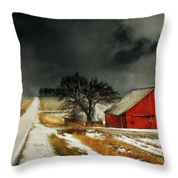 Throw Pillow featuring the photograph Road To Nowhere by Julie Hamilton