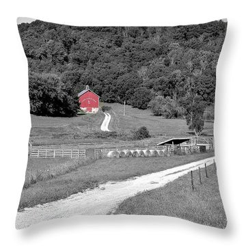 Road To Red Throw Pillow