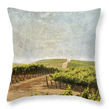 Road To Riches Throw Pillow by Marilyn Hunt
