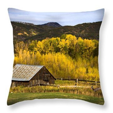 Throw Pillow featuring the photograph Road To Steamboat Lake by John Hix