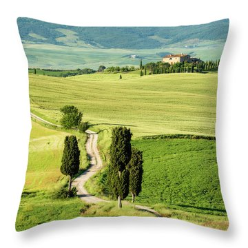 Road To Terrapille Throw Pillow