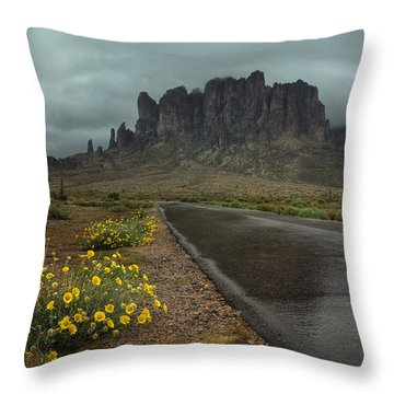 Road To The Superstitions Throw Pillow by Sue Cullumber