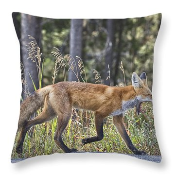 Road Weary Throw Pillow