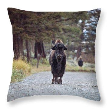 Roadblock Throw Pillow