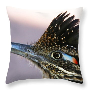 Roadie 2 Throw Pillow by Dan Redmon
